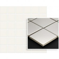 Albir Bianco Mozaika Prasowana K.4,8X4,8 29,8X29,8 G.1